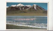 BF28390 bolivia provincia sud lipez parjuanas en la laguna can  front/back image