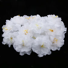 20pcs 8cm Artificial Silk Flower Roses Peony Heads Home Office Decor White
