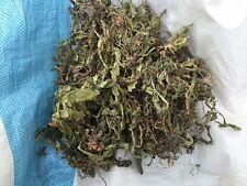 1kg Löwenzahnblätter Löwenzahn getrocknet Blätter gute Qualität