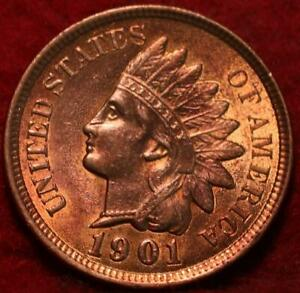 Uncirculated Red 1901 Philadelphia Mint Indian Head Cent