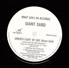 HEAR! Private Rock Punk 45 GIANT SAND Uneven Light Of Day on What Goes On