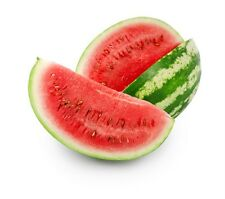 Watermelon Candy Fb Type Candle / Soap Fragrance Oil 1-16 Ounce *Free Shipping*