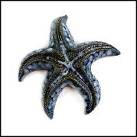 Blue Starfish Wall Plaque Original Hand Made Pottery Art Design by Zoo Ceramics