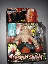 "WWF Maximum Sweat HHH Triple H Hunter DX 6"" Figure JAKKS Pacific 1999 WWE NEW"