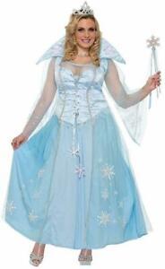 Winter Princess Blue Costume Fancy Dress Frozen Snowflakes Womens Plus Size