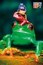 ANIMAL POSTER Frogs What's Up?