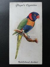 No.27 RED COLLARED LORIKEET - Aviary and Cage Birds by John Player 1933