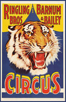 Ringling Brother's Barnum Barnum & Bailey Circus Tiger Head 11x17 Two Posters