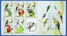 La Romania Romania 2011 PAPPAGALLI PARROTS UCCELLI BIRDS blocco 496 MNH EDIZIONE 700
