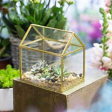 Copper House Shape Close Glass Geometric Terrariumn Succulent Planter Pot