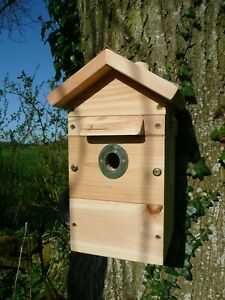 BARGAIN - 2 x Bird Nest Box and Feeder - Camera Ready!