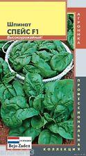 Spinach Seeds Space F1 Hight Yeild 180 seeds Ukraine S0925