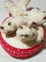 "Fao schwarz 5 Plush Siamese Himalayan Kittens On red Fish Pillow large 18"""