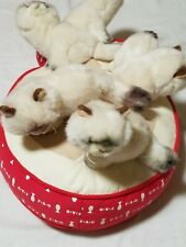 Fao schwarz 5 Plush Siamese Himalayan Kittens On red Fish Pillow large 18""