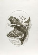 J. D. Mayhew Limited Edition Engraving - Right Whales