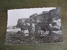 ancienne carte postale CPSM La Plaine sur mer Port Giraud le ramassage du goëmon