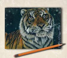 "Original ACEO ATC Tiger Big Cat Feline Animal Art Drawing ""Here"" By V Kenworthy"
