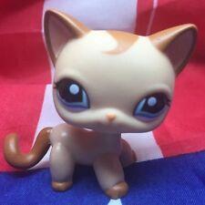Littlest Pet Shop Standing Cat Short Hair Brown Curl Mocha Tan LPS #1024