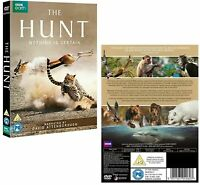 The Hunt Nothing is Certain DVD Box Set 2015 - David Attenborough - New & Sealed