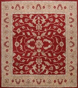 12 ft. Square Floral Traditional Agra Oriental Area Rug Hand-Tufted Wool Carpet