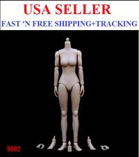 ZY TOYS 1/6 Scale MEDIUM Bust PALE skin tone female body N002