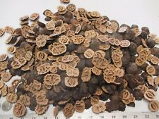500 + Large Black Walnut Shells End Cuts (Heels)