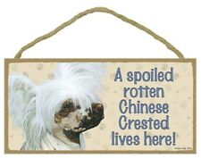 "A Spoiled Rotten Chinese Crested lives here! Dog Sign 5""x10"" New Wood Plaque 194"