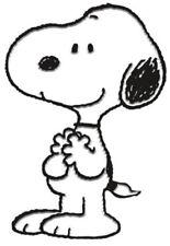 Peanuts Snoopy Enamel / Metal Pin Badge (nm)
