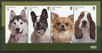 Montserrat Dogs Stamps 2014 MNH Husky Bulldogs Chihuahua Basset Hound 4v M/S