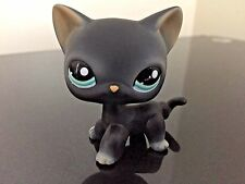Littlest Pet Shop Cat # 994 Black Siamese Kitty Cat Short Hair Blue Eyes