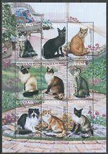 PK439 GUYANA FAUNA PETS DOMESTIC ANIMALS CATS 1KB MNH