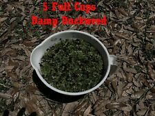 New listing 5 cups duckweed live plants Turtle Herp food Organic no chemicals tank raised