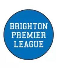 """Brighton Premier League Badge 25mm 1"""" Pin Button Badge Seagulls Football"""