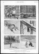 1895-Antigua De Impresión De Canadá Columbia Británica Rocky kootway Backwoods Turner (133)