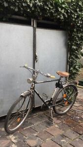 Victoria Fahrrad