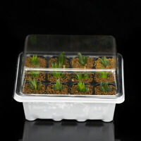 3x/set 12 Cell Seed Starter Kit Starting Plant Propagation Tray Dome Gardenin