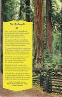 Postcard Poem of the Redwoods California CA PC224 [CH
