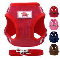 Dog Puppy Harness Padded Adjustable Reflective Cat Dog Walking Vest with Lead