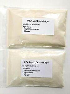 Potato Dextrose Agar PDA | Malt Extract Agar MEA | Mushroom Agar Petri dishes