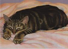 Sleeping Tabby Cat 'Diving' Blank Greetings Card From Painting By Celia Pike 031