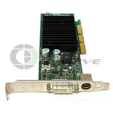 nVidia IBM P117 AGP 64MB DDR High Profile Video Graphics Card 180-10117-0000-B00