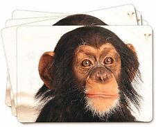 Chimpanzee Picture Placemats in Gift Box, AM-1P