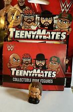 New Teenymates Seth Rollins WWE Mini Figure Wrestling Collectible Map The Shield