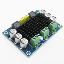 100W 12V 24V TPA3116DA Mono Channel Digit Power Amp Audio Amplifier Board BBC