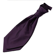 DQT Woven Plain Solid Check Cadbury Purple Wedding Pre-Tied Boys Cravat Free Pin
