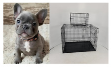 New Dog Pet Cage Puppies Training Crate Carrier Fast UK Delivery XS-XL