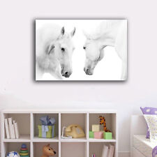 Two White Horses Stretched Canvas Print Framed Wall Art Home Decor Painting
