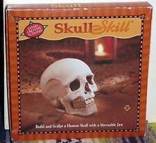Skull Skill: Human Skull Build & Sculp Creative Kit, Safari Creative Activities