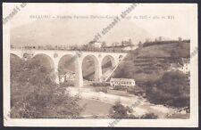 BELLUNO LINEA FERROVIARIA BELLUNO CADORE 16 TRENO FERROVIA VIADOTTO viagg. 1916