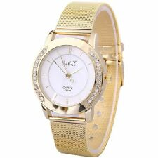 Golden Acier inoxydable Strass Watch (431)
